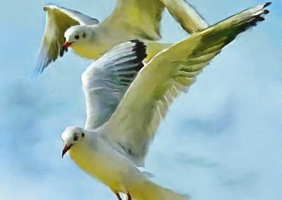 seagulls_painting